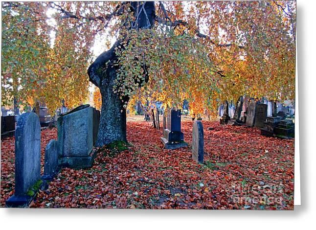 Beautiful Historic Camp Hill Cemetery Halifax Nova Scotia Greeting Card by John Malone