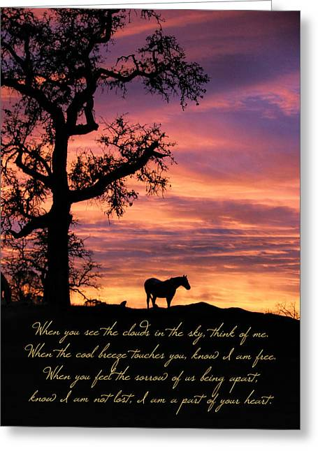 Beautiful Horse Memorial, With Original Poem Greeting Card by Stephanie Laird