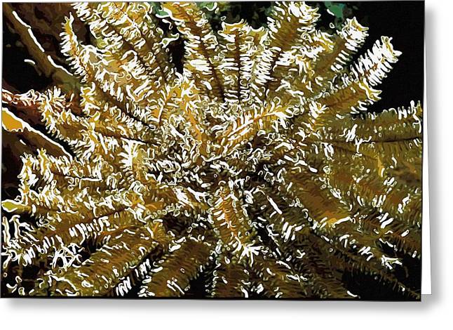 Beautiful Marine Plants 12 Greeting Card