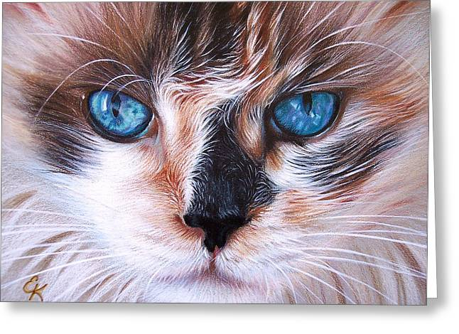 Beautiful Mia Greeting Card by Elena Kolotusha