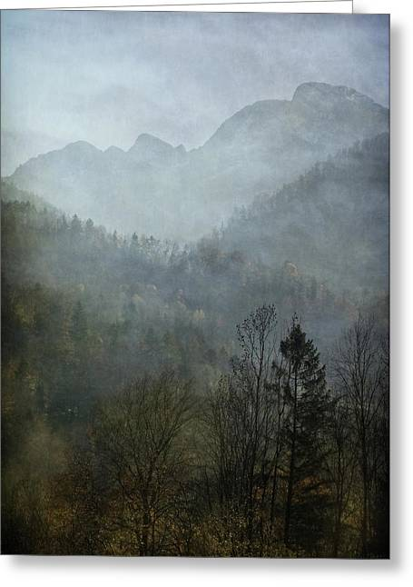 Beautiful Mist Greeting Card