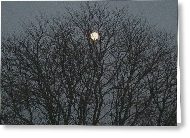 Beautiful Moon Greeting Card