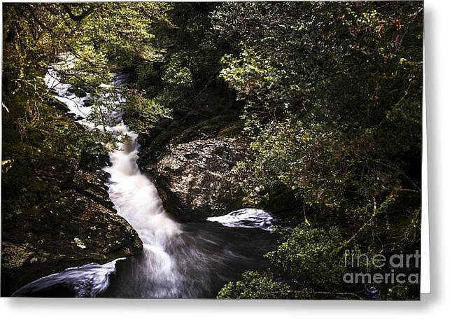 Beautiful Nature Landscape Of A Flowing Waterfall Greeting Card
