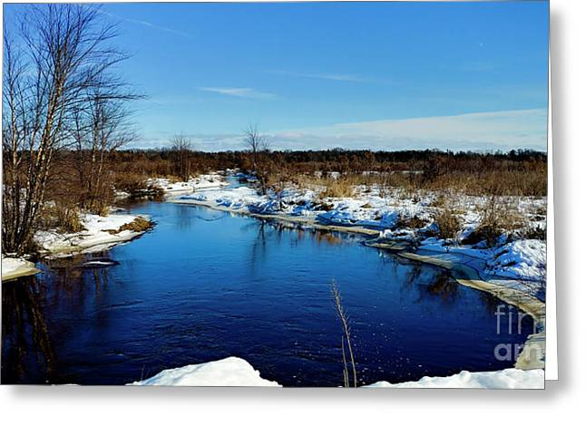Beautiful Necedah Wildlife Refuge  Greeting Card by Ricky L Jones