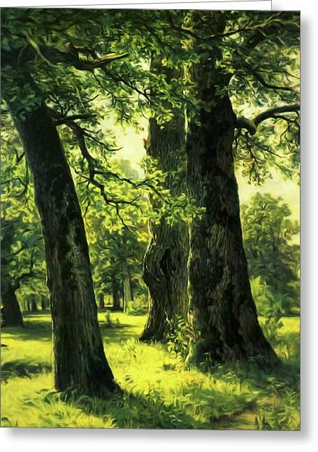 Beautiful Oak Trees Reach To The Skies Greeting Card