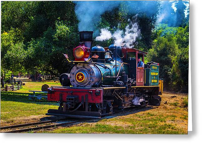 Beautiful Old Steam Train Greeting Card by Garry Gay
