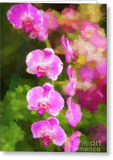 Beautiful Orchids Greeting Card