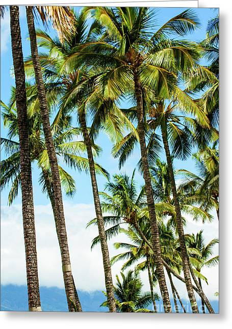 Greeting Card featuring the photograph Beautiful Palms Of Maui 16 by Micah May