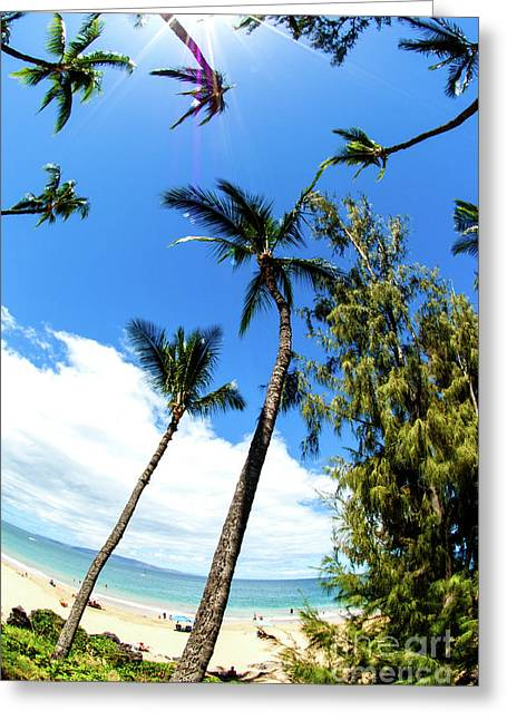 Greeting Card featuring the photograph Beautiful Palms Of Maui 17 by Micah May