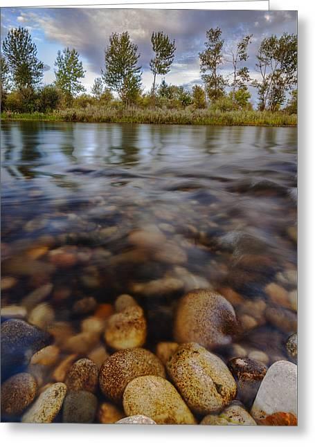 Beautiful Pebbles In Boise River Idaho Greeting Card by Vishwanath Bhat