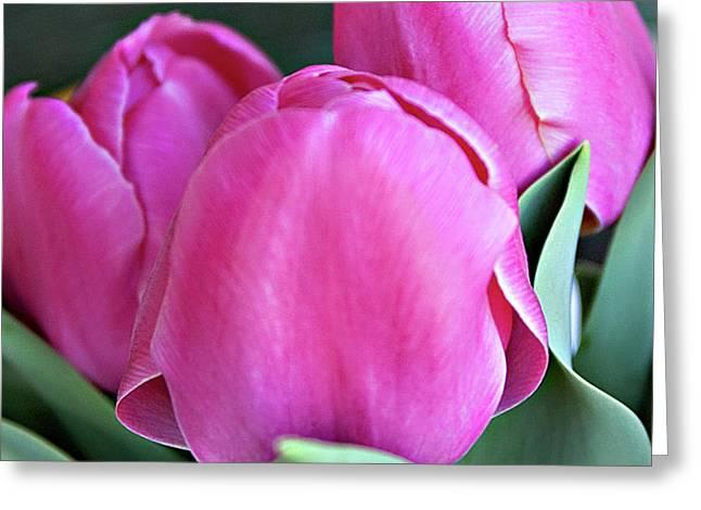Beautiful Pink Lipstick Greeting Card