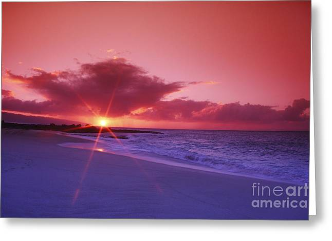 Beautiful Pink Sunset Greeting Card by Vince Cavataio - Printscapes