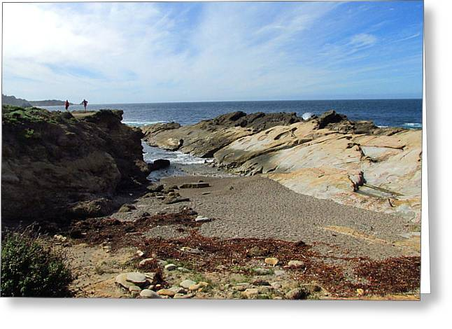 Beautiful Point Lobos Two Greeting Card