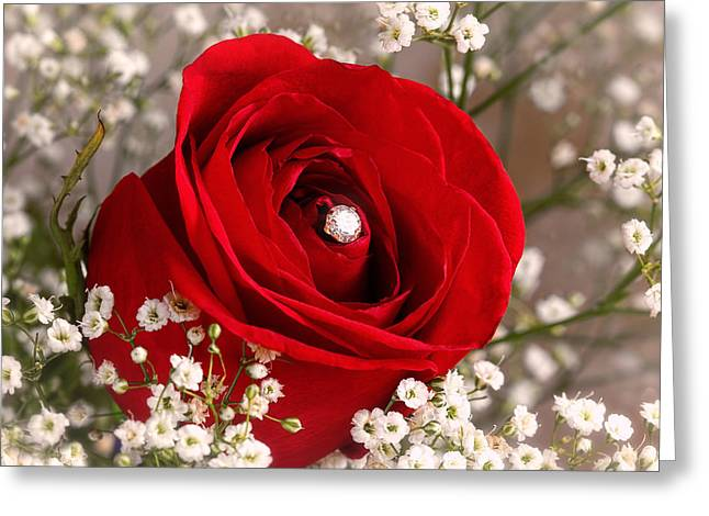 Beautiful Red Rose With Diamond Greeting Card by Tracie Kaska