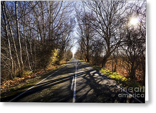 Beautiful Roads In Winters Shadow Greeting Card