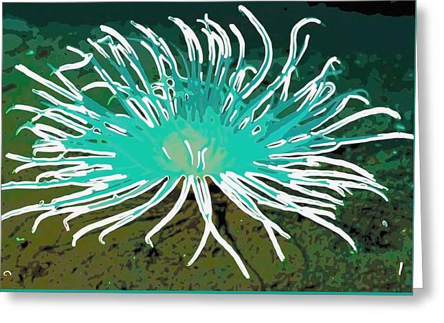 Beautiful Sea Anemone 2 Greeting Card