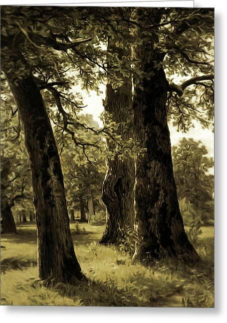 Beautiful Sepia Oak Trees Reach To The Skies Greeting Card