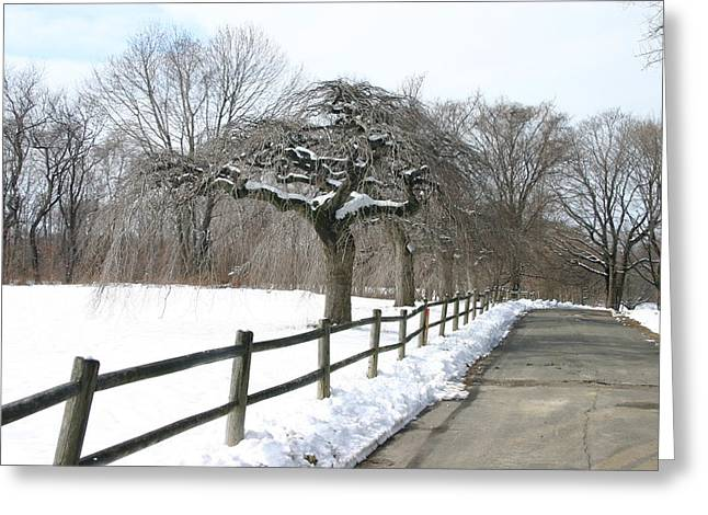 Beautiful Snow Setting Greeting Card by Dennis Curry