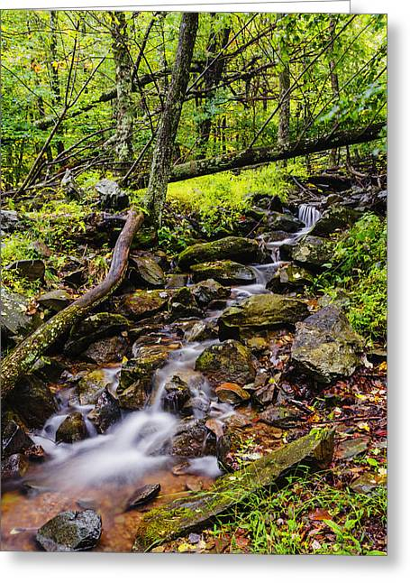 Beautiful Stream In Shenandoah National Park In Virginia Greeting Card by Vishwanath Bhat