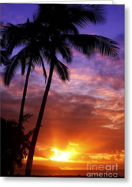 Beautiful Sunset Greeting Card
