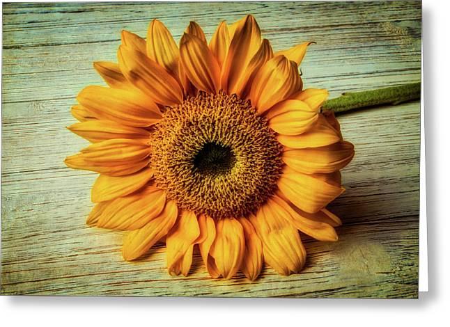 Beautiful Textured Sunflower Greeting Card