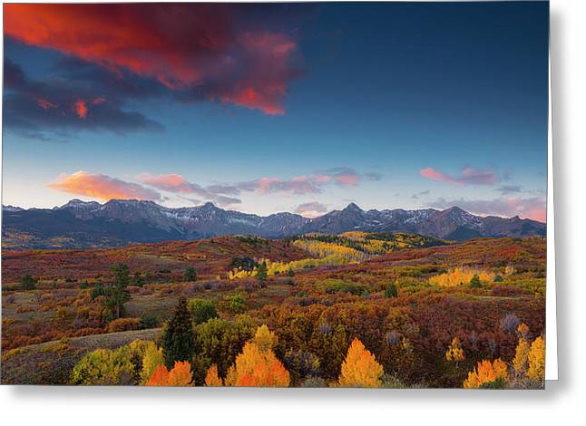 Greeting Card featuring the photograph Beautiful Tints Of Autumn by Tim Reaves