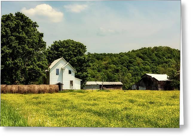 Beautiful West Virginia Greeting Card by L O C
