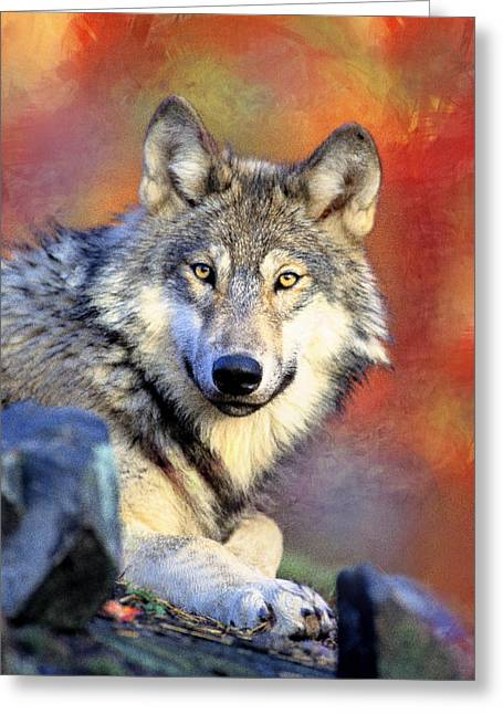 Beautiful Wolf Art Greeting Card by Georgiana Romanovna