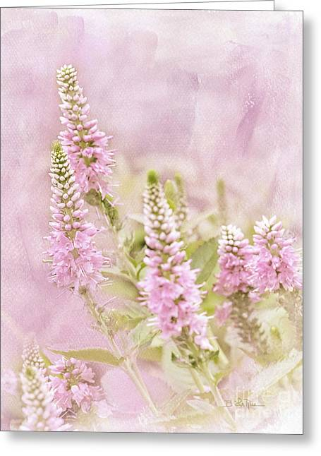 Greeting Card featuring the photograph Beautilicious by Betty LaRue