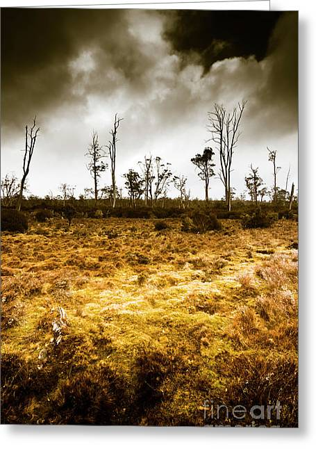 Beauty And Barren Bushland Greeting Card
