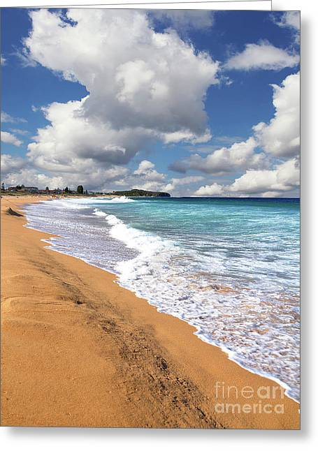 Beauty And The Beach By Kaye Menner Greeting Card by Kaye Menner