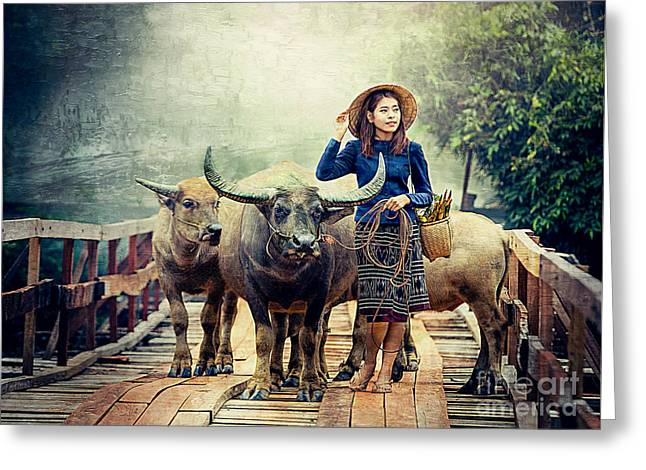 Beauty And The Water Buffalo Greeting Card