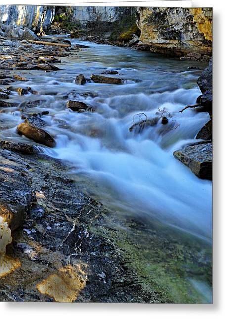 Beauty Creek Greeting Card by Larry Ricker