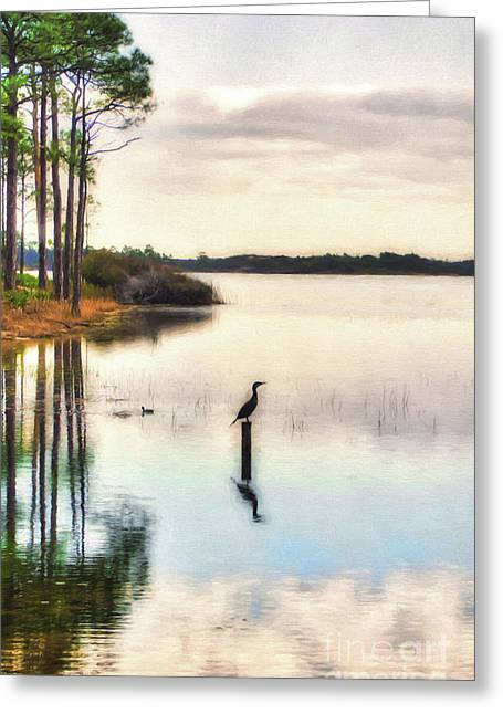 Beauty In Nature Greeting Card by Mel Steinhauer