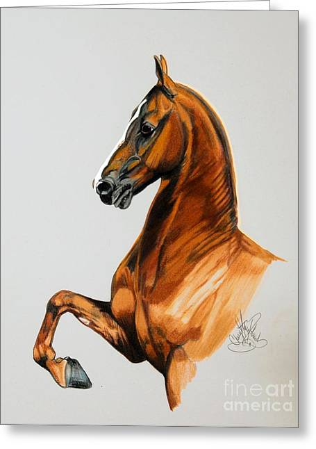 Sirtainly Stylish  - Saddlebred Greeting Card