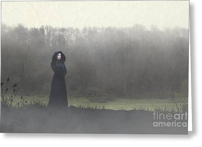 Beauty In The Fog Greeting Card
