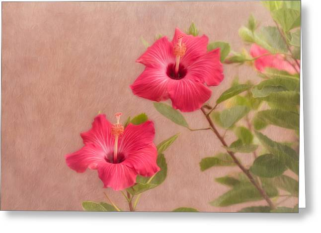 Beauty In The Garden Greeting Card by Kim Hojnacki