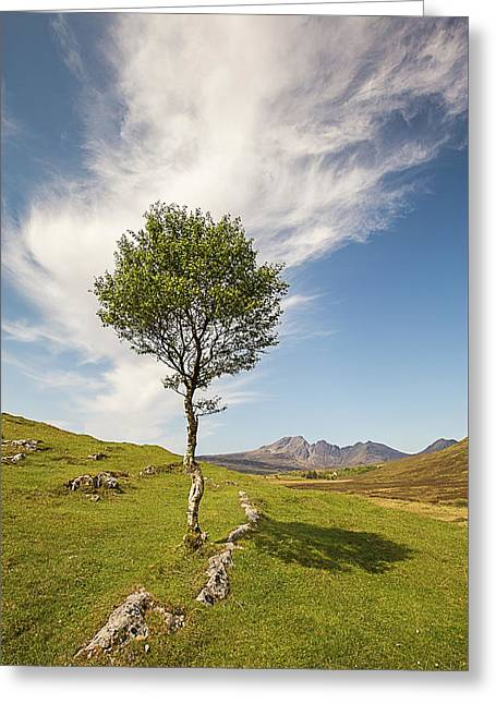 Beauty Of The Highlands Greeting Card