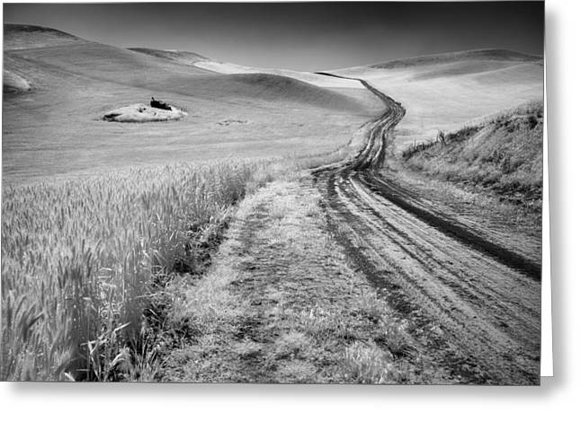 Beauty Of The Open Road Greeting Card