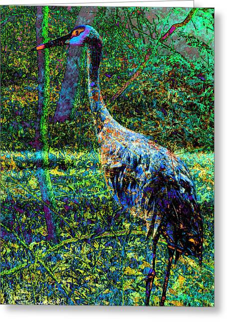 Beauty Of The Sandhill Crane Greeting Card