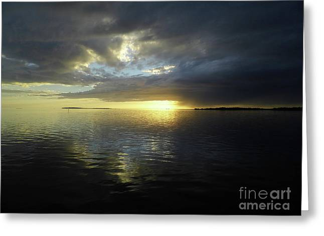 Beauty Reflecting Over The Gulf Greeting Card by D Hackett