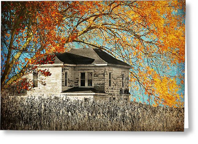 Beauty Surrounds Deserted Home Greeting Card by Kathy M Krause