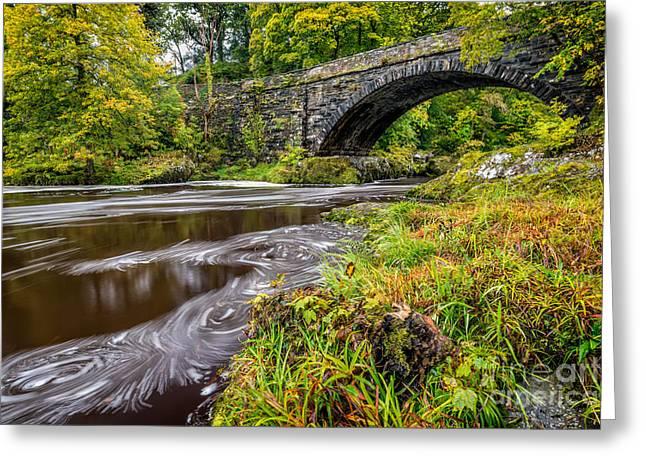 Beaver Bridge Greeting Card by Adrian Evans
