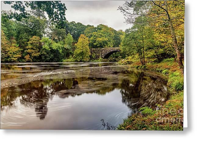 Beaver Bridge Autumn Greeting Card by Adrian Evans