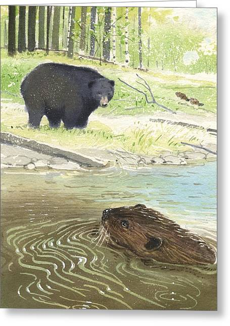 Beaver Greeting Card by Denny Bond