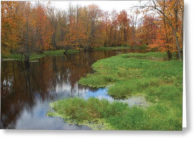 Beaver River Colors Greeting Card