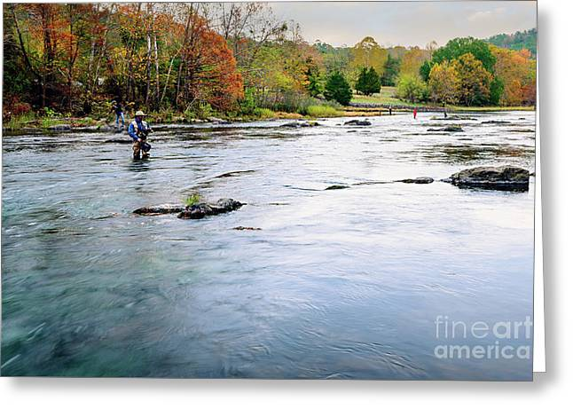 Beaver's Bend Fly Fishing Greeting Card by Tamyra Ayles
