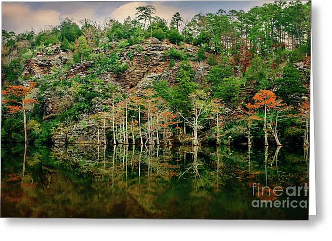 Beaver's Bend Overlook Greeting Card by Tamyra Ayles