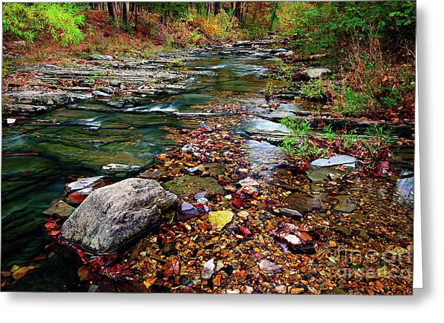 Beaver's Bend Tiny Stream Greeting Card