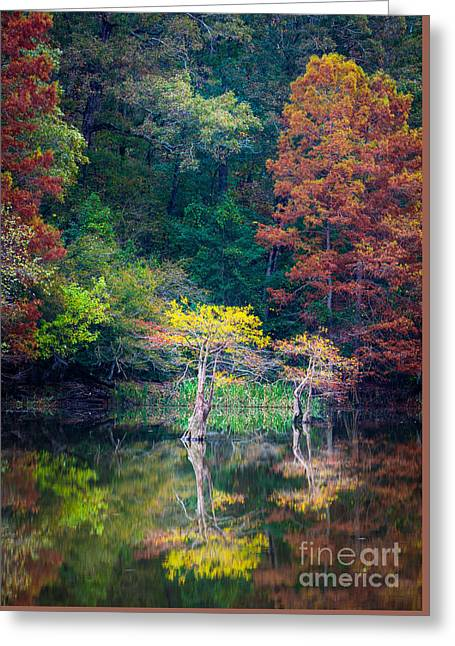 Beavers Bend Trees Greeting Card by Inge Johnsson